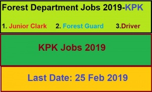 jobs in forest department kpk,